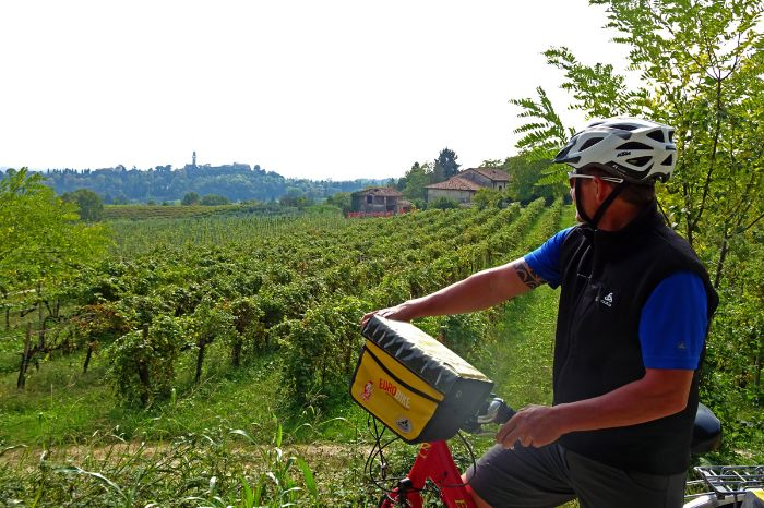 Cyclist enjoys the view to the wineyards