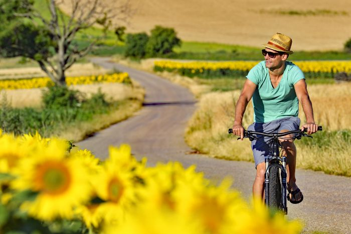 Cyclist passing a field of sunflowers