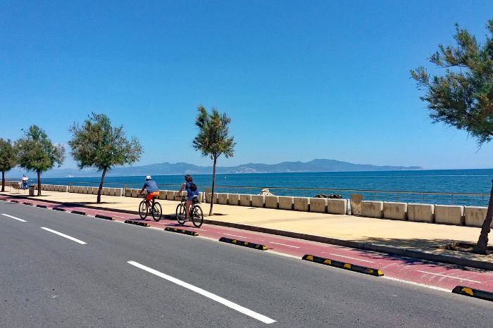 Cycle path next to the sea and palm trees