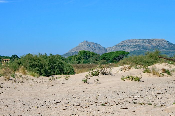 Dunes in front of mountain
