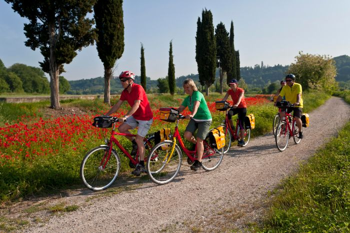 Cyclists on cycle path near Borghetto