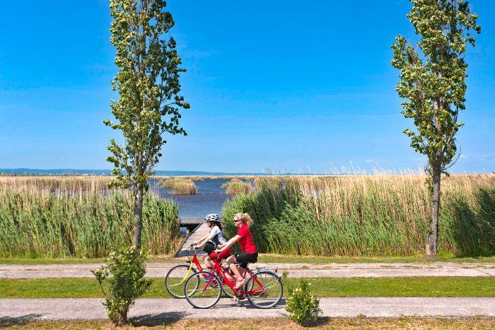 Neusiedlersee österreich  Radreisen am Neusiedler See: Erholung pur mit Eurobike