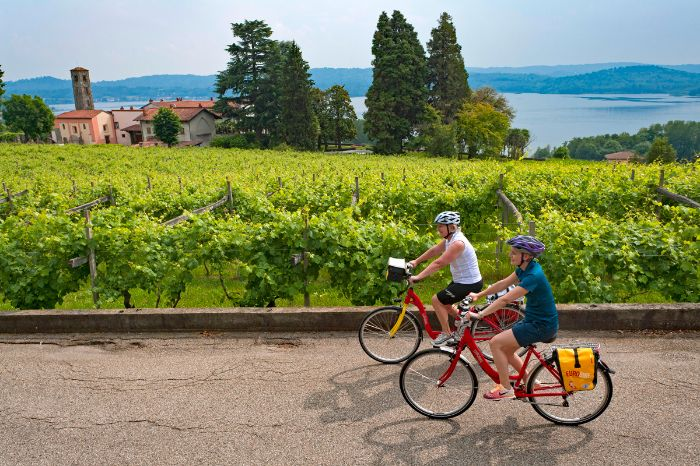 Cyclists in a vineyard near Lake Viverone