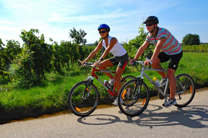 Two cyclists in the vineyards