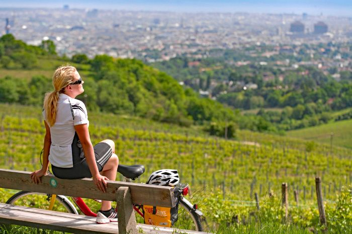 Cyclist enjoys the sun in vineyard