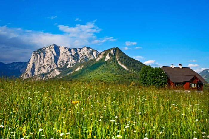 Meadow and mountain in Altausee