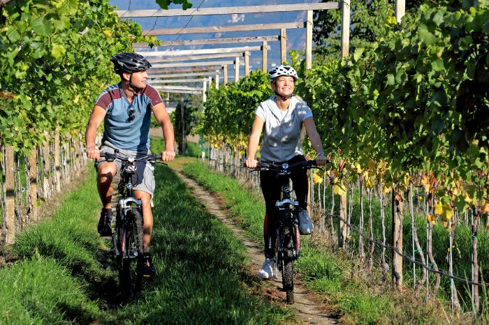 Cycle path in the vineyards near Donaueschingen