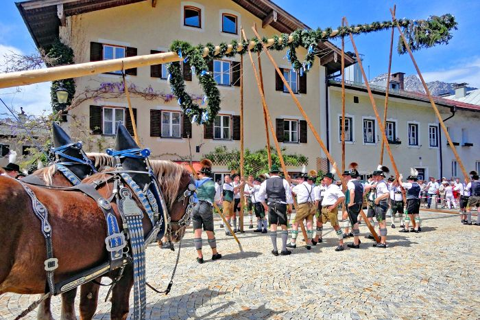 Traditioneller Maibaum in Bad Reichenhall