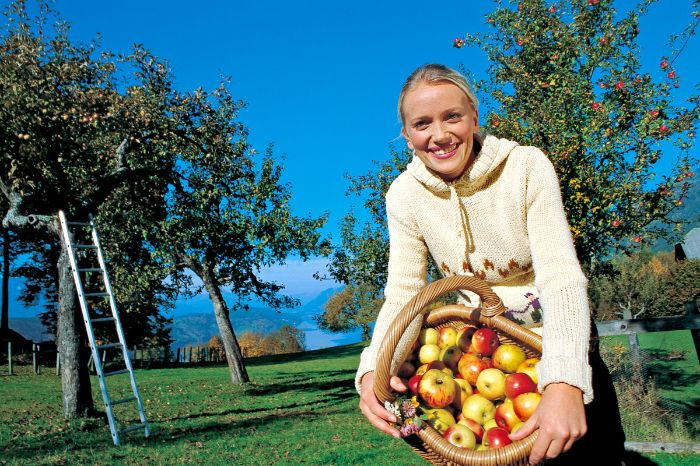 Woman with basket full of apples
